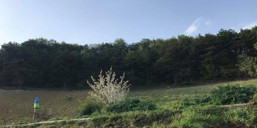 Geyve  Yaylak Köyü Resimleri