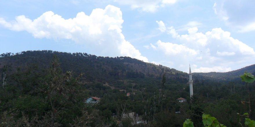 Sakarya Çınardibi Köyü Resimleri