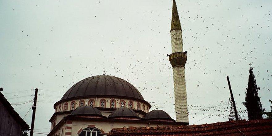 Hendek Kargalıyeniköy Köyü Resimleri