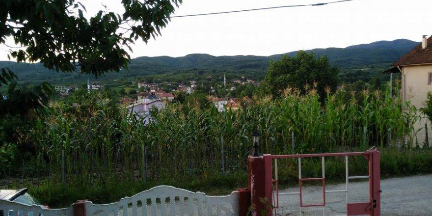 Hendek Kazımiye Köyü Resimleri