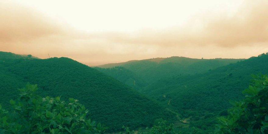 Hendek Kocatöngel Köyü Resimleri