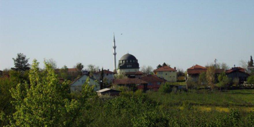 Hendek Paşaköy Köyü Resimleri