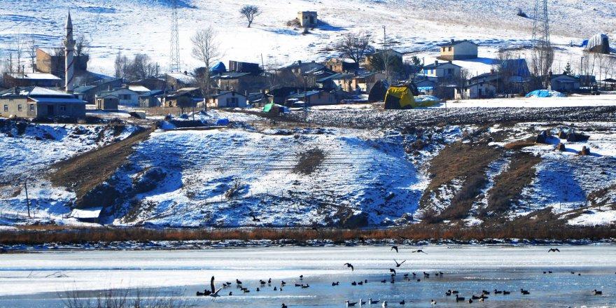 Aşkale Sarıbaba Köyü Resimleri