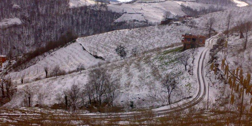 Tekkeköy Çimenli Köyü