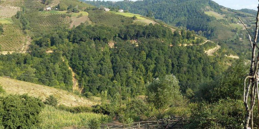 Vezirköprü Gökçedere Köyü