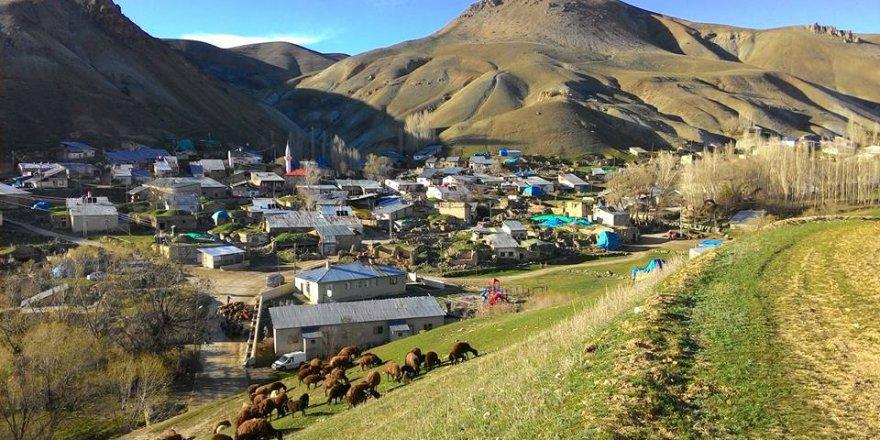 Aşkale Taşağıl Köyü Resimleri