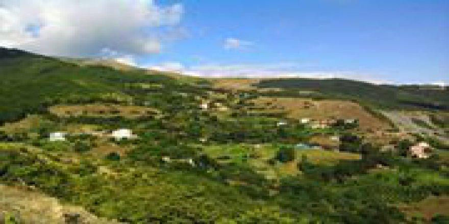 Mesudiye Hamzalı Köyü Resimleri