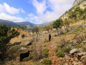 Adana Karaisalı Çevlik Köyü Resimleri