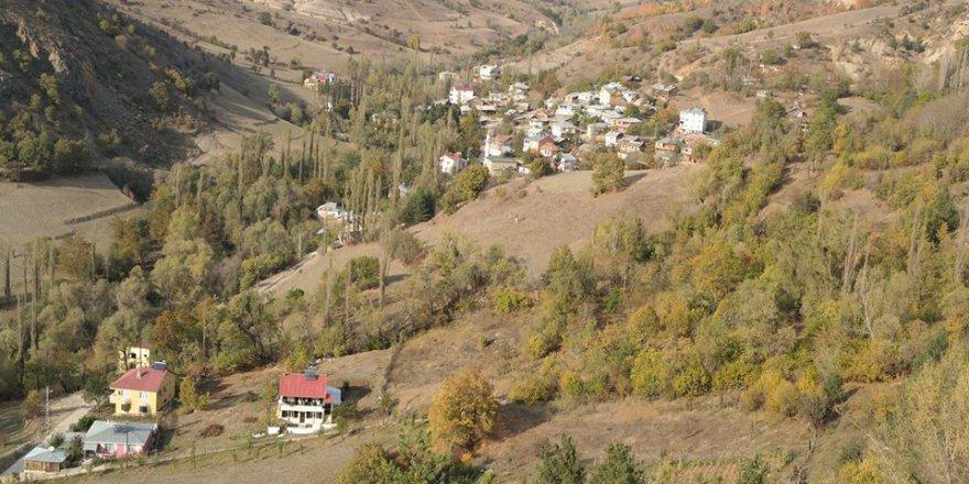 Mesudiye Yavşan Köyü Resimleri