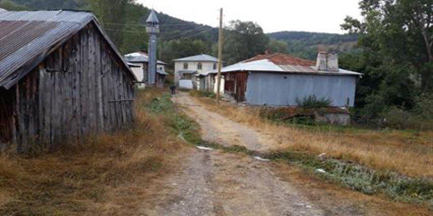 Mesudiye Yeşilçit Köyü Resimleri