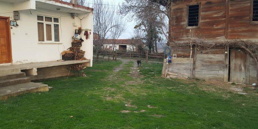Alaçam Yeşilköy Köyü Resimleri