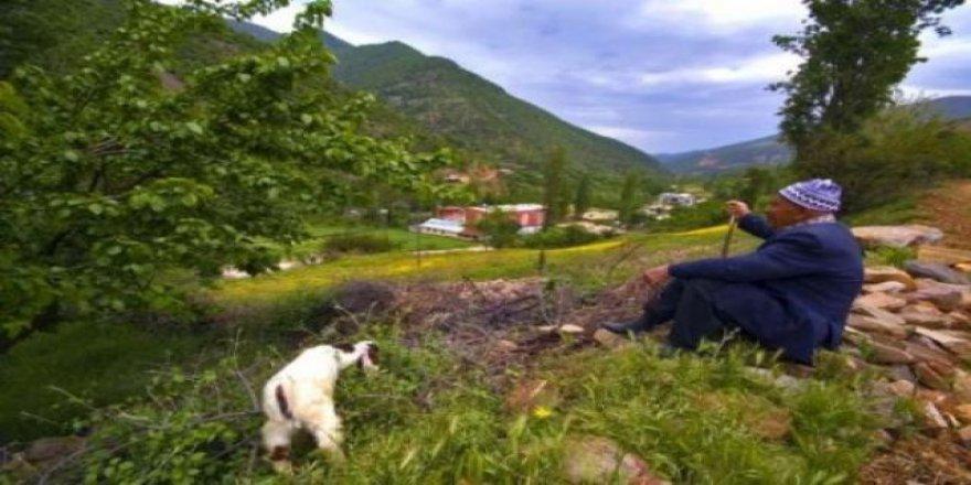 Bahçe Aşağıakdere Köyü Resimleri