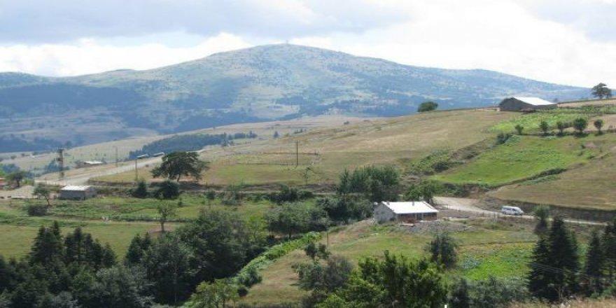 Alaçam Yukarısoğukçam Köyü Resimleri