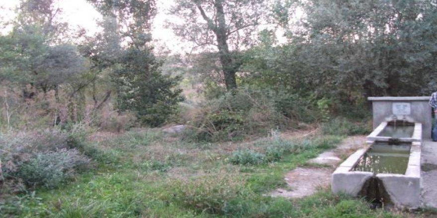 Zile Kazıklı Köyü Resimleri