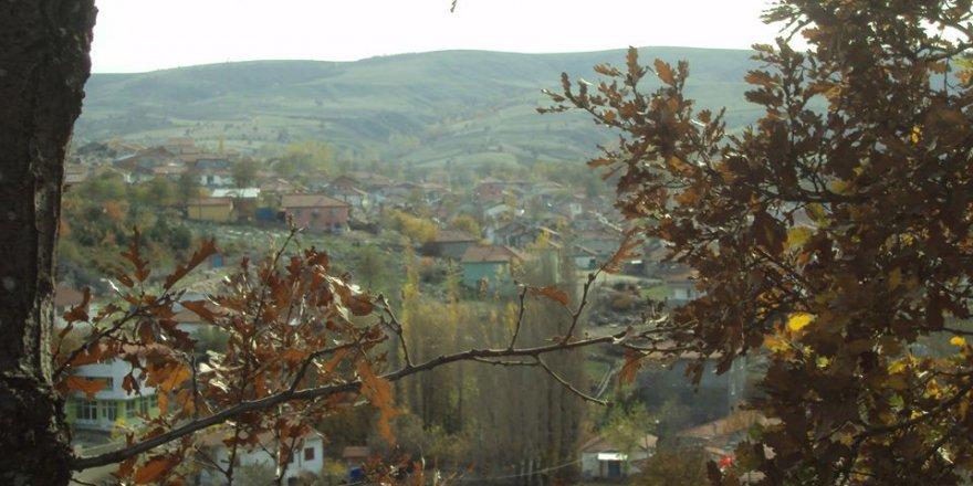 Zile Kervansaray Köyü Resimleri
