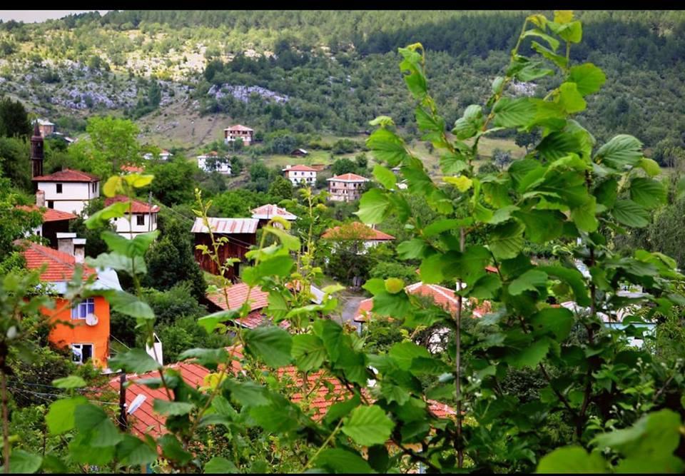 Eflani Demirli Köyü Resimleri 1