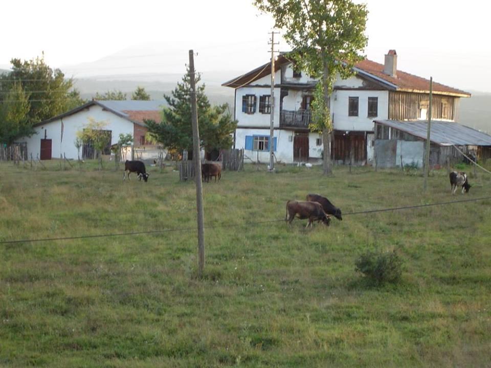 Eflani Kocacık Köyü Resimleri 1