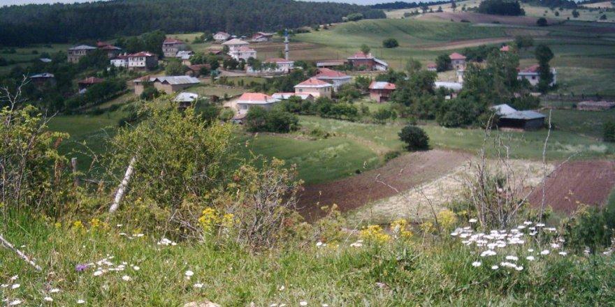 Eflani Pınarözü Köyü Resimleri