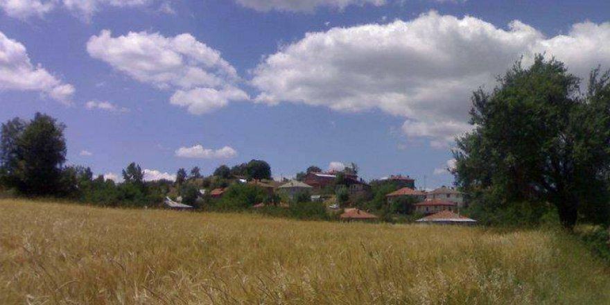 Eflani Şenyurt Köyü Resimleri