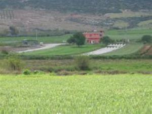 Adana Yüreğir Kütüklü Köyü Resimleri