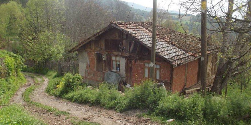 Ovacık Yeniören Köyü Resimleri