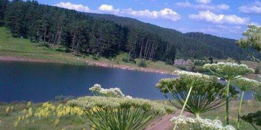 Karabük Kayacık Köyü Resimleri