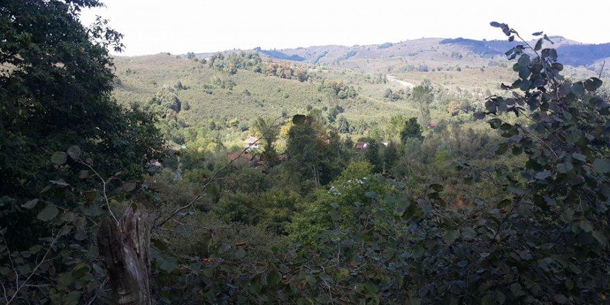Kocaali Köyyeri  Köyü Resimleri