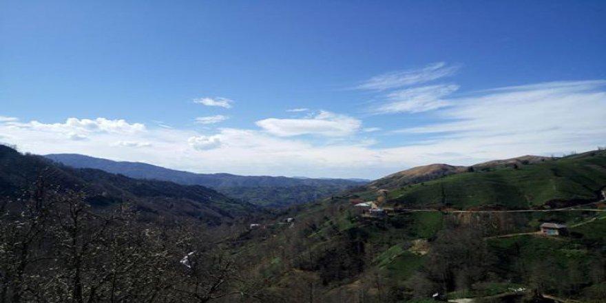 Ardeşen Yeşiltepe Köyü Resimleri
