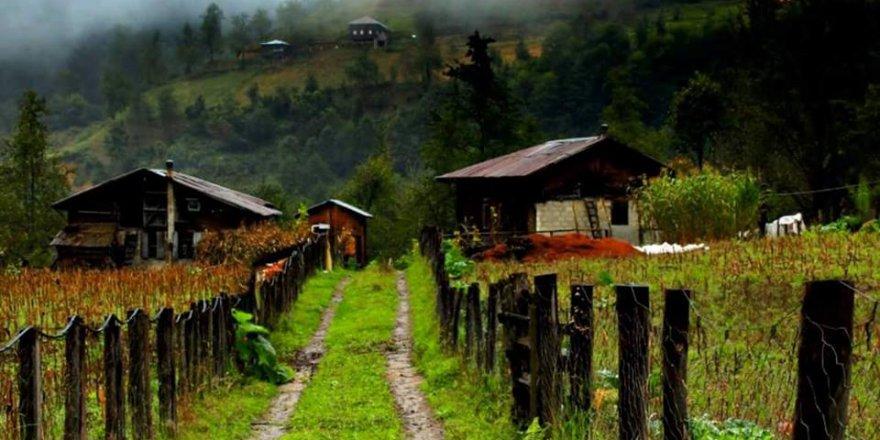 Ardeşen Yukarıdurak Köyü Resimleri
