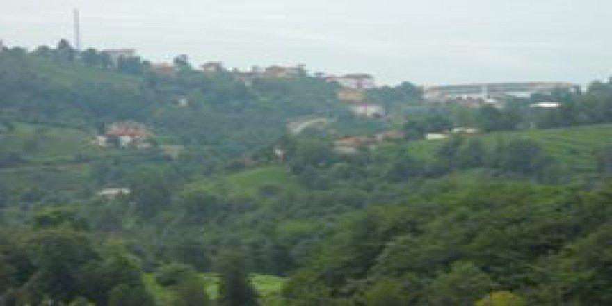 Derepazarı Sandıktaş Köyü Resimleri