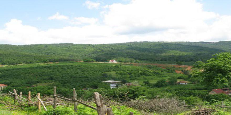 Karasu Yassıgeçit Köyü Resimleri