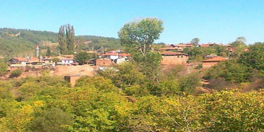Taraklı Çamtepe Köyü Resimleri