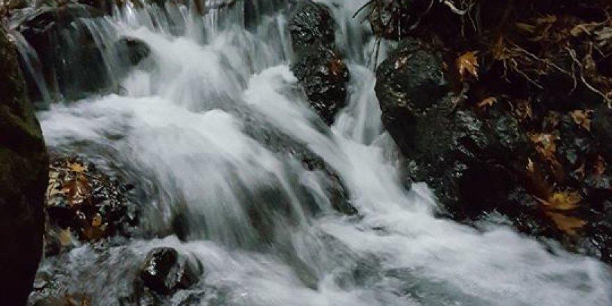 Sapanca Kuruçeşme Köyü Resimleri