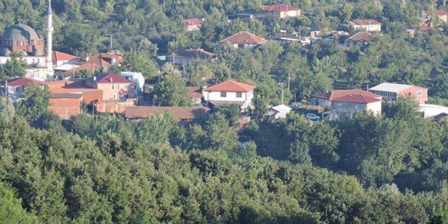 Sapanca Şükriye  Köyü Resimleri
