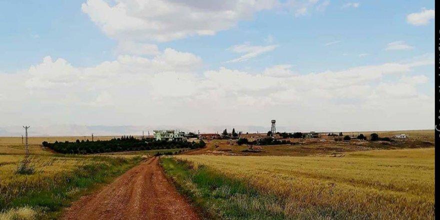 Derik Kanatlı Köyü Resimleri