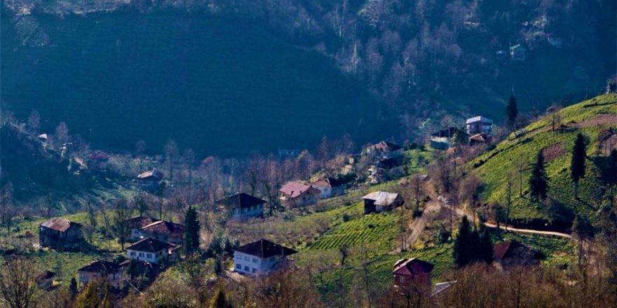 Fındıklı Tepecik Köyü Resimleri
