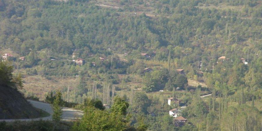Fındıklı Yeniköy Köyü Resimleri