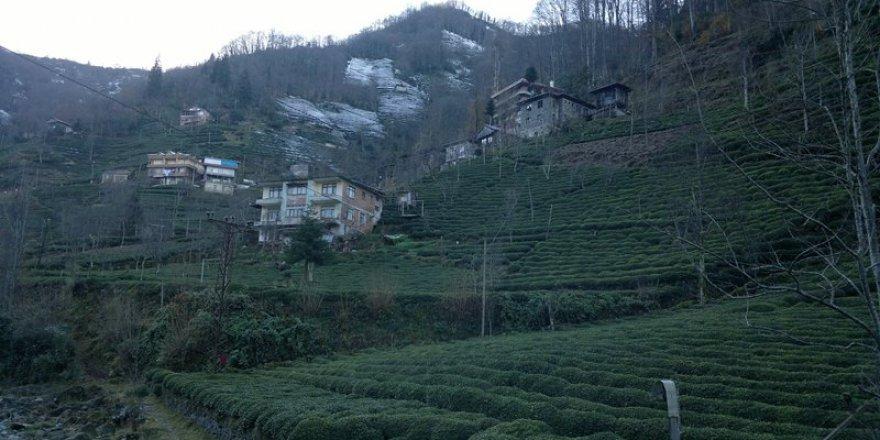 Güneysu Ballıdere Köyü Resimleri