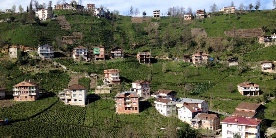 Güneysu Ortaköy Köyü Resimleri