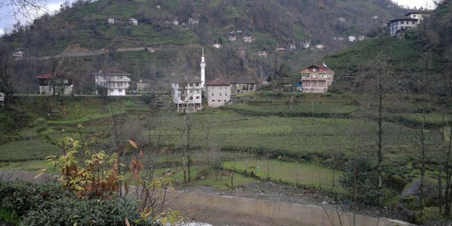 Güneysu Yeniköy Köyü Resimleri