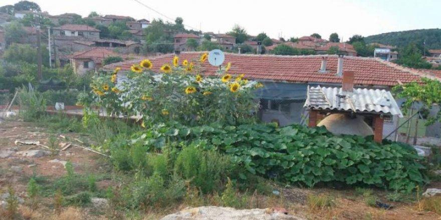 Akhisar Seğirdim Köyü Resimleri