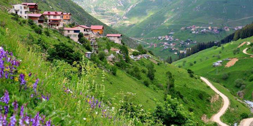 İkizdere Çiçekli Köyü Resimleri