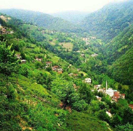 İkizdere Gürdere Köyü Resimleri 1