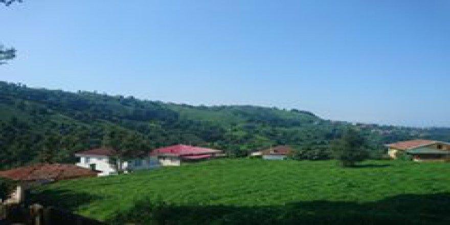 İyidere Taşhane Köyü Resimleri