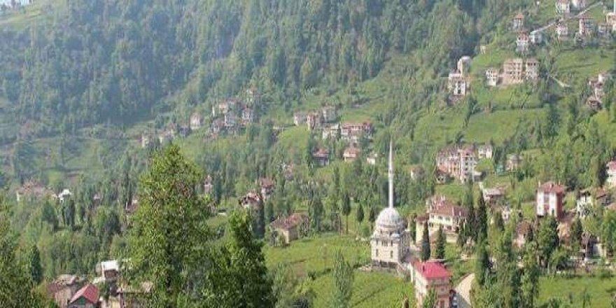 Kalkandere Çağlayan Köyü Resimleri