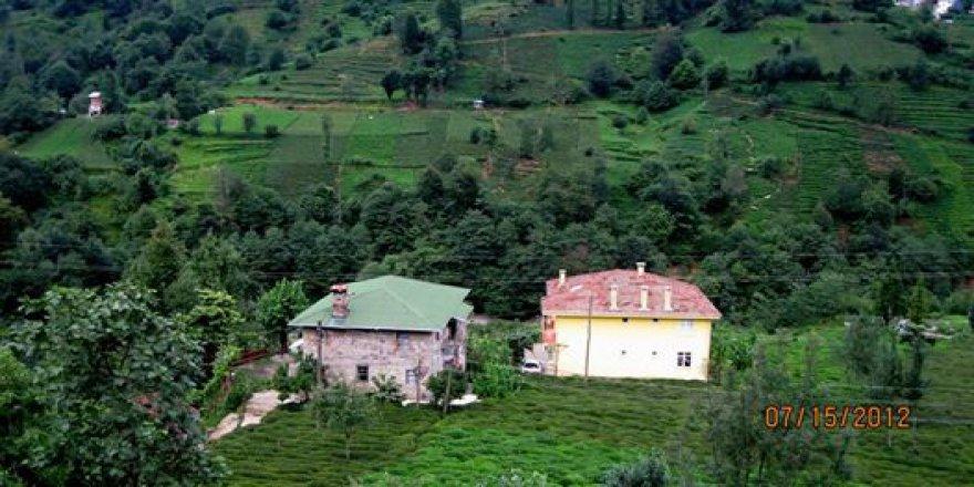 Kalkandere Çayırlı Köyü Resimleri