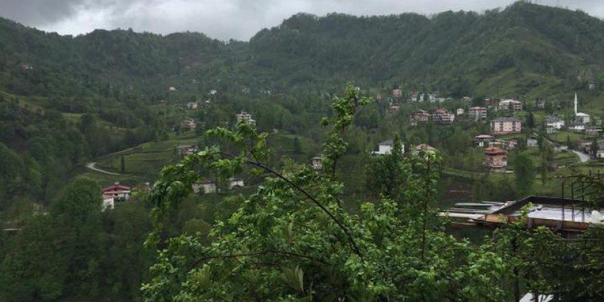 Kalkandere Dülgerli Köyü Resimleri