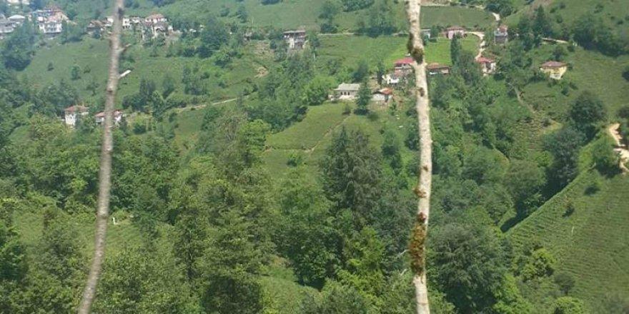 Kalkandere Dilsizdağı Köyü Resimleri