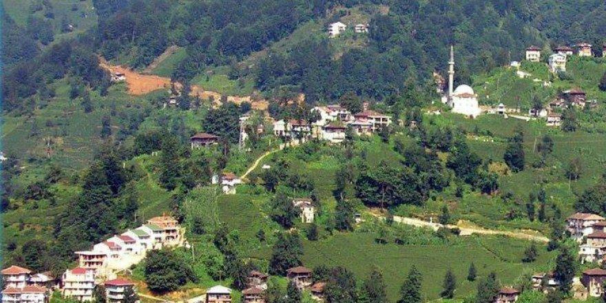Kalkandere Hurmalık Köyü Resimleri
