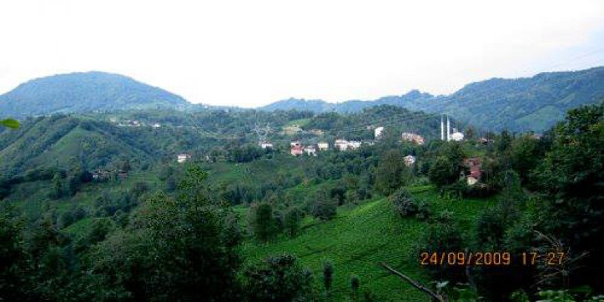 Kalkandere İnciköy Köyü Resimleri
